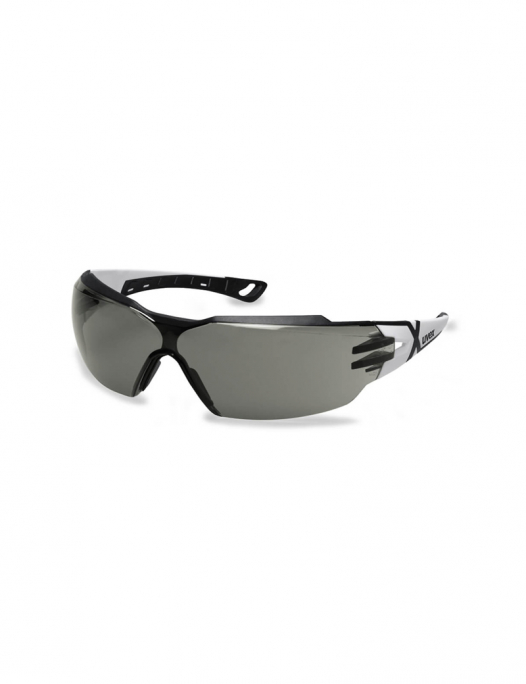 Uvex, pheos, cx2, schutzbrille, brille, schutz, arbeit, PSA, cx, sichtfeld, auge - Uvex-Uvex Pheos cx2 Schutzbrille-UV-9198237