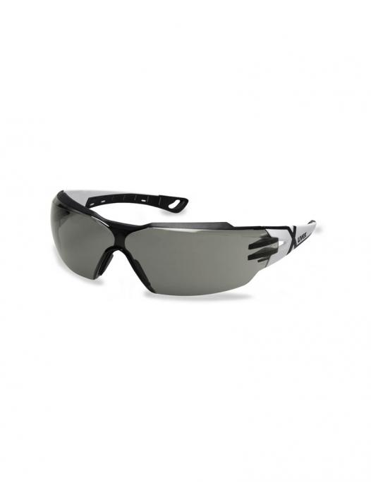 Uvex, pheos, cx2, schutzbrille, brille, schutz, arbeit, PSA, cx, sichtfeld, augen, X, scheibe, damen, frauen, herren, männer, psa, schutzausrüstung-Uvex Pheos cx2 Schutzbrille-UV-9198237